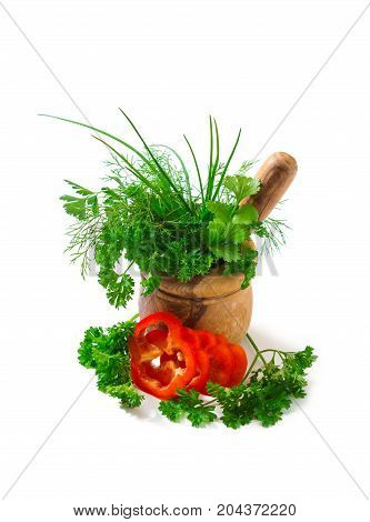 Spices And Herbs In A Mortar