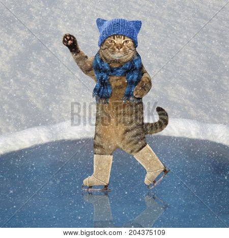 The cat in knitted a hat and a scarf is skating. It's snowing.
