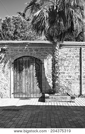 Stone wall with old gate decorated with palm tree in Tel Aviv. Israel historic warehouse on the line from Tel Aviv to Jerusalem. Black and white picture