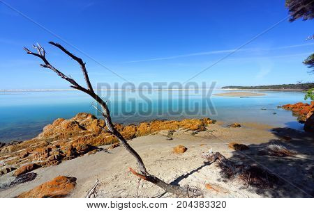 Beautiful Day In Mallacoota Australia