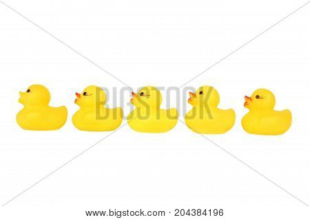 Five yellow plastic rubber duck in a row cut out on and isolated on a white background