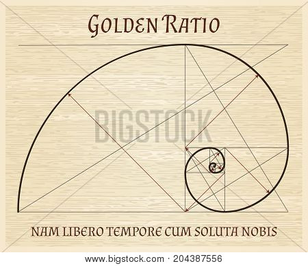 Fibonacci section spiral, golden proportion nature harmony vintage concept. Golden proportions ratio retro scroll drawing