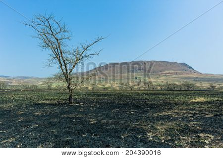 Rural winter scenic landscape fire burn of dry grass farming landscape for coming summer rains.