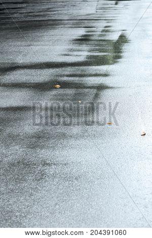 Wet Asphalt Sidewalk With Rain Puddles