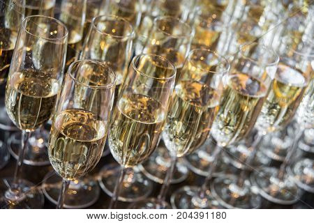 a lot of glasses with champagne stand in a row. glasses with champagne closeup