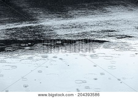 Wet Asphalt And Water Puddle Background With Reflections