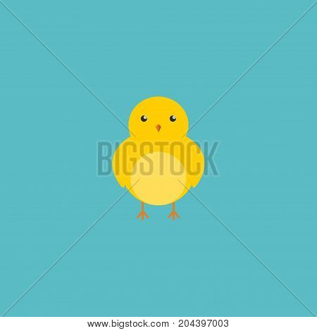 Flat Icon Chicken Element. Vector Illustration Of Flat Icon Poultry Isolated On Clean Background