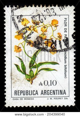 ARGENTINA - CIRCA 1985: a stamp printed in the Argentina shows oncidium bifolium is a species of orchid ranging from Brazil to northern Argentina, series, circa 1985