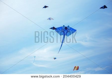 group of kites and blue kite in the sky. Kite festival. Famile event