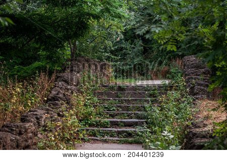 Steps in the old abandoned autumn park