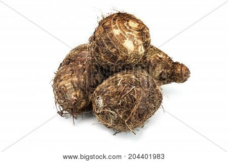 Taro close up of root vegetable on white background