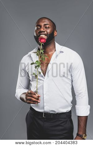 Romantic Handsome Man With Red Rose, African American Sexy Charming Boyfriend With Flower Presen