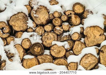 Snow-covered stack of firewood in winter season