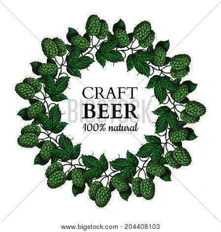 Hop plant vector wreath  drawing illustration. Hand drawn artistic beer hopes with leaves on branch. Vintage isolated object on  white background. Engraved element for label, banner, icon, menu, oktoberfest