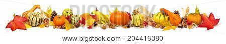 Colorful autumn decoration with leaves pumpkins and more isolated and extra wide format as banner or border