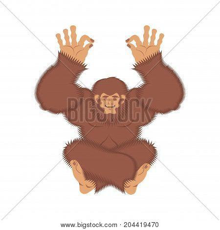 Bigfoot Yoga. Yeti Yogi. Abominable Snowman Relaxation And Cognition. Vector Illustration