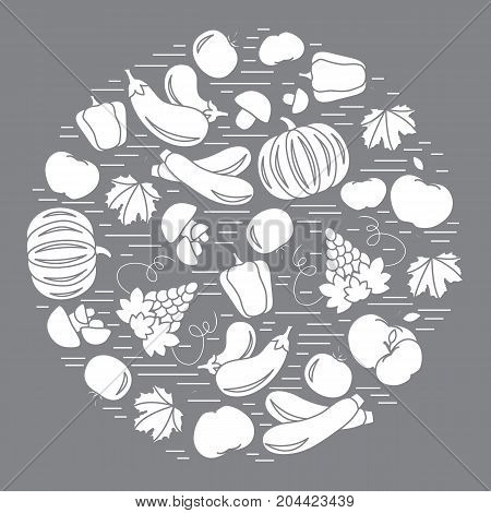 Set Of Autumn Seasonal Fruits And Vegetables In Circle. Tomato, Pepper, Grapes, Zucchini, Eggplant A