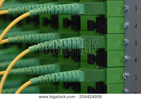 Fiber Optical Network Panel with Patch Cords