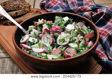 Salad with pieces of radish and cucumber herbs and green onions dressed yogurt. Horizontal shot. Foreground.