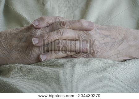 Wrinkled Hands Of A Senior Woman