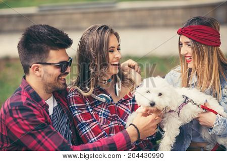 Friends in the park having fun with cute puppy