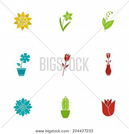 Flowers glyph color icon set. Sunflower head, daffodil, may-lily, hibiscus, roses, lotus, cactus, rosebud. Silhouette symbols on white backgrounds. Negative space. Vector illustrations