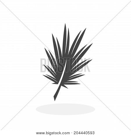 Palm leaf icon isolated on white background. Palm leaf vector logo. Flat design style. Modern vector pictogram for web graphics - stock vector