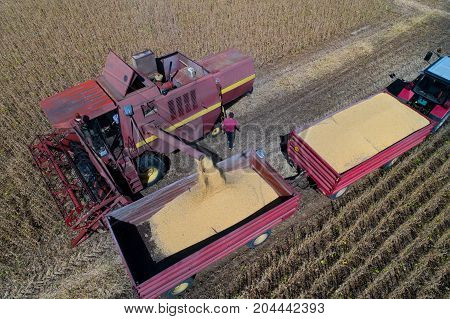 Soybean Harvest Shoot From Drone