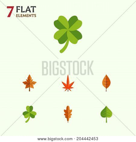 Flat Icon Leaves Set Of Leafage, Foliage, Aspen And Other Vector Objects