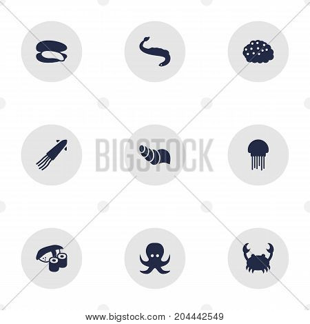 Collection Of Lobster, Shell, Japanese Roll And Other Elements.  Set Of 9 Sea Icons Set.