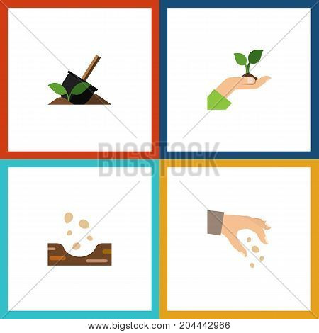 Flat Icon Sow Set Of Care, Seed, Soil And Other Vector Objects