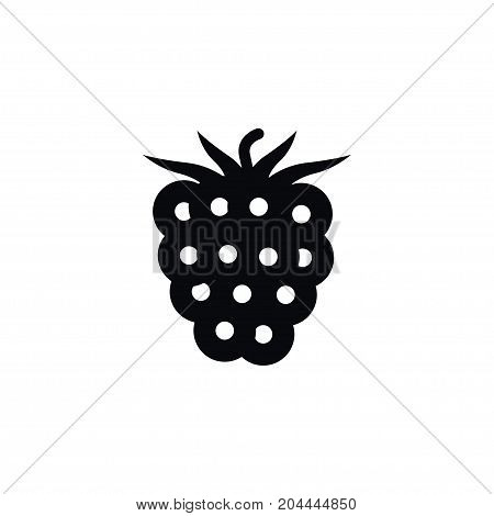 Freshness Vector Element Can Be Used For Bramble, Blackberry, Dewberry Design Concept.  Isolated Blackberry Icon.
