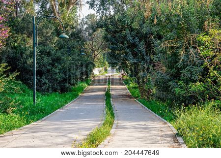 Pedestrian Walkway Along Pedieos River Park In Nicosia