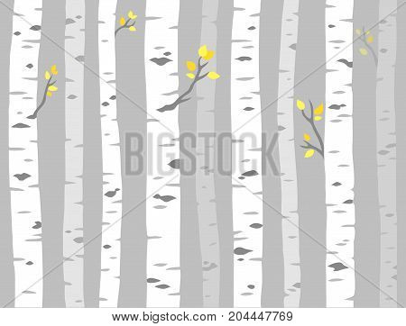 Aspen or birch grove seamless pattern. Tree trunks on gray background simple vector illustration.