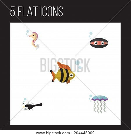 Flat Icon Sea Set Of Hippocampus, Seafood, Scallop And Other Vector Objects