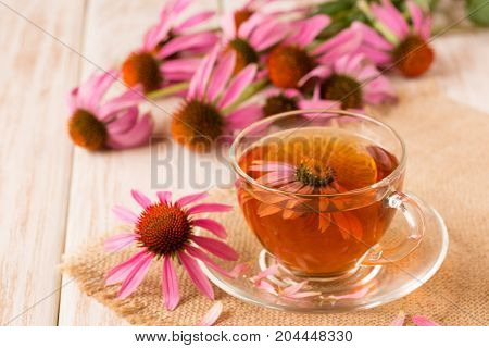 Cup of echinacea tea on white wooden table.