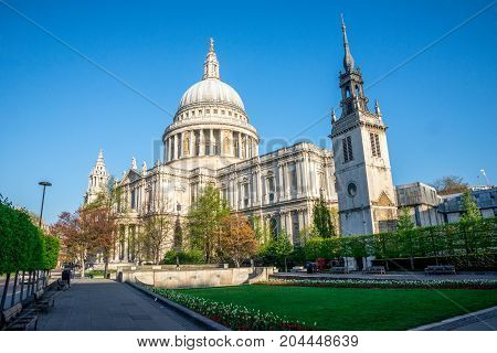 A View Of St Paul's Cathedral From Festival Gardens In Central London