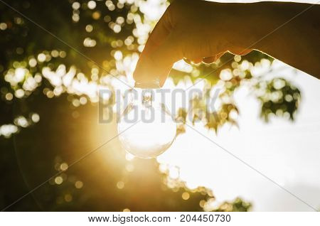 hand holding light bulb with sunset concept use alternative energy for save world