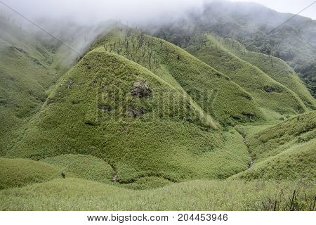 Landscape from Dzukou Valley, Nagaland on a cloudy day