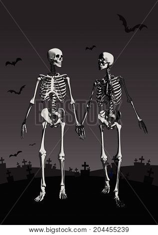A couple of engraving skeleton holding hand and walking in the dark grave background illustration
