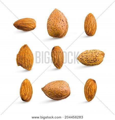 Almond Isolated. Seamless Pattern With Almond. Almond On The White Background. Nuts On White Backgro