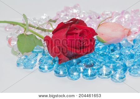 Red Rose And Pink Rose Flowers Are On The Blue Gemstones.