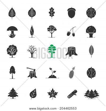 Tree types glyph icons set. Forestry silhouette symbols. Forest, park. Vector isolated illustration