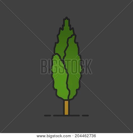 Poplar tree color icon. Forestry. Forest tree. Isolated vector illustration