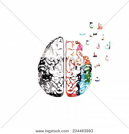 Colorful human brain with Arabic Islamic calligraphy symbols isolated vector illustration