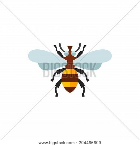 Icon of honey bee. Pollination, insect, apiary. Bee garden concept. Can be used for topics like biology, summer, nature