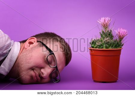 Male in love with beautiful small cactus with pink flowers. Flowering cactus, macro, mamillaria, isolated on a monophonic light blue background, crimson flowers, bud, thorns, coarse.