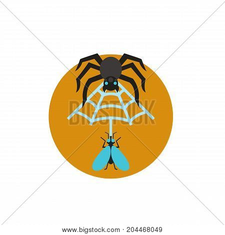 Icon of spider web. Trap, danger, bug. Mosquito prevent concept. Can be used for topics like arachnophobia, Halloween, nature