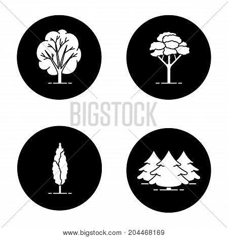 Trees glyph icons set. Fir forest, poplar, maple trees. Vector white silhouettes illustrations in black circles