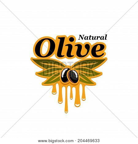 Natural olive isolated icon. Olive tree branch with black fruit and dripping oil for organic olive product packaging emblem and extra virgin oil bottle label design